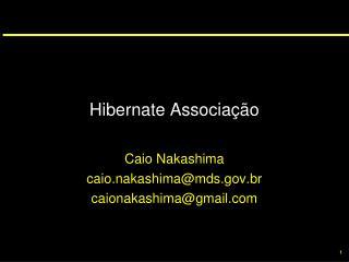 Hibernate Associação