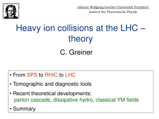 Heavy ion collisions at the LHC � theory