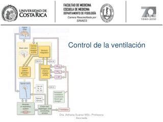 Control de la ventilaci�n