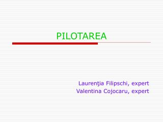 PILOTAREA