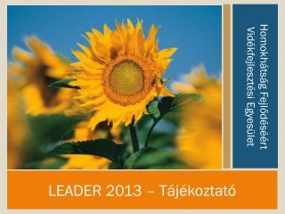 LEADER 2013 – Tájékoztató