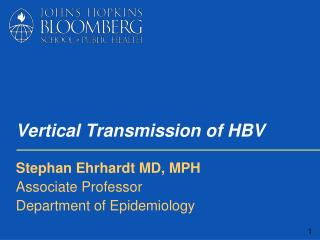 Vertical Transmission of HBV