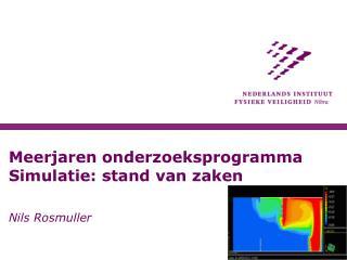 Meerjaren onderzoeksprogramma Simulatie: stand van zaken