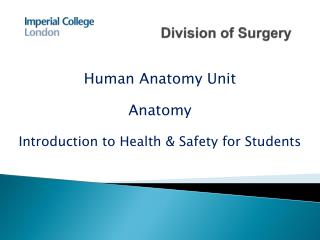 Division of Surgery