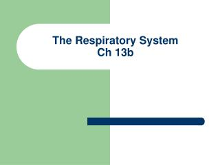 The Respiratory System Ch 13b