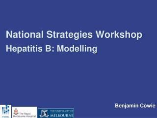 National Strategies Workshop Hepatitis B: Modelling