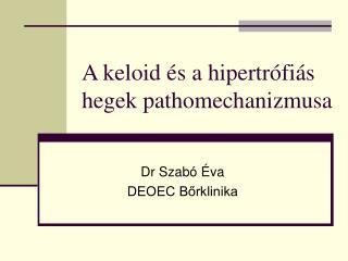 A keloid és a hipertrófiás hegek pathomechanizmusa