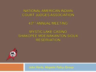 John Harte, Mapetsi Policy Group
