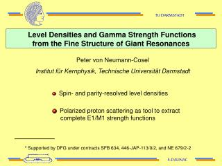 Level Densities and Gamma Strength Functions  from the Fine Structure of Giant Resonances
