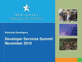 Welcome Developers Developer Services Summit November 2010