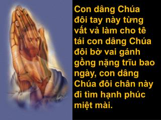 ConDangChuaDoiTayNay