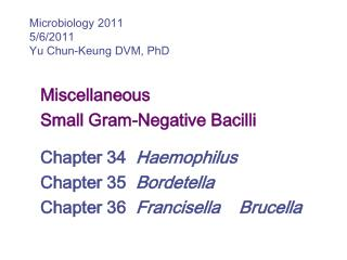 Miscellaneous Small Gram-Negative Bacilli