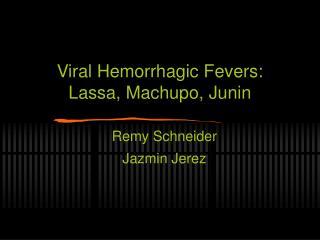Viral Hemorrhagic Fevers: Lassa, Machupo, Junin