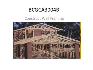 BCGCA3004B