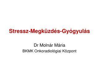 Stressz-Megk�zd�s-Gy�gyul�s