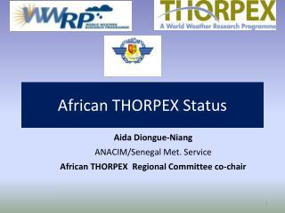 African THORPEX Status