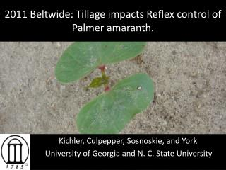 2011 Beltwide: Tillage impacts Reflex control of Palmer amaranth.
