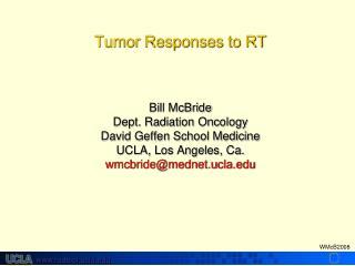 Determinants of Tumor Cure