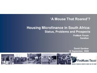 'A Mouse That Roared'? Housing Microfinance in South Africa: Status, Problems and Prospects
