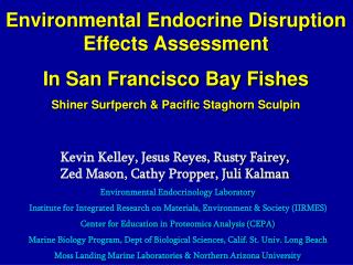 Environmental Endocrine Disruption  Effects Assessment In San Francisco Bay Fishes
