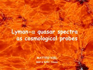 Lyman- a  quasar spectra    as cosmological probes