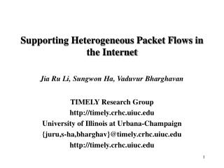 Supporting Heterogeneous Packet Flows in the Internet