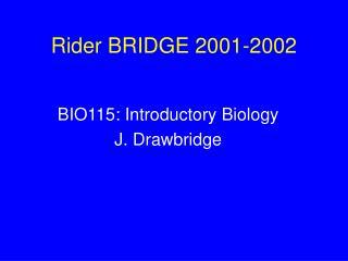 Rider BRIDGE 2001-2002