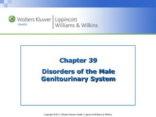 Chapter 39 Disorders of the Male  Genitourinary System