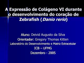 A Express�o de Col�geno VI durante o desenvolvimento do cora��o de Zebrafish ( Danio rerio )