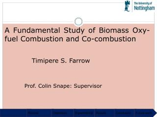 A Fundamental Study of Biomass Oxy-fuel Combustion and Co-combustion