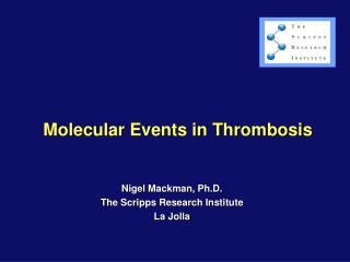 Molecular Events in Thrombosis