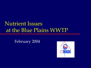 Nutrient Issues  at the Blue Plains WWTP