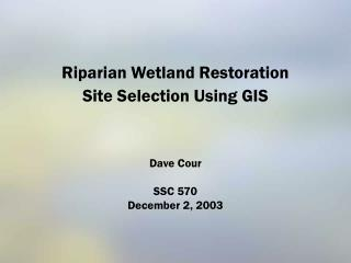 Riparian Wetland Restoration  Site Selection Using GIS