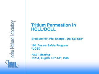 Tritium Permeation in HCLL/DCLL