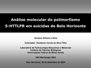 Gustavo Silveira e Silva Orientador: Humberto Corrêa da Silva Filho
