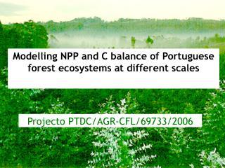 Modelação da PPL e do balanço de C dos ecossistemas florestais portugueses a diferentes escalas