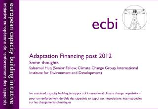 Adaptation Financing post 2012 Some thoughts