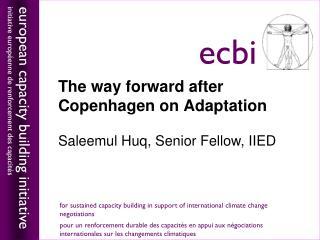 The way forward after Copenhagen on Adaptation Saleemul Huq, Senior Fellow, IIED