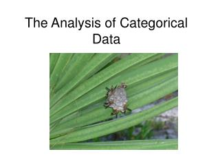 The Analysis of Categorical Data