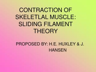 CONTRACTION OF SKELETLAL MUSCLE: SLIDING FILAMENT THEORY