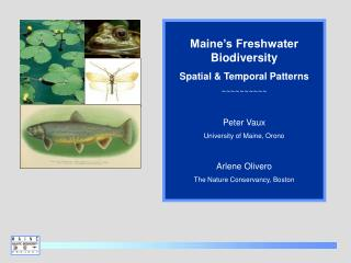Maine's Freshwater Biodiversity Spatial & Temporal Patterns ~~~~~~~~~~ Peter Vaux