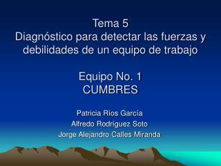 Patricia Ríos García Alfredo Rodríguez Soto Jorge Alejandro Calles Miranda