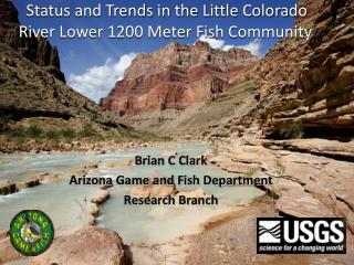 Status and Trends in the Little Colorado River Lower 1200 Meter Fish Community