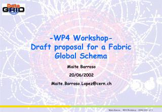 -WP4 Workshop- Draft proposal for a Fabric Global Schema