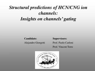 Structural predictions of HCN/CNG ion channels: Insights on channels� gating