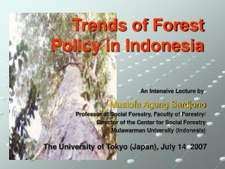 Trends of Forest Policy in Indonesia
