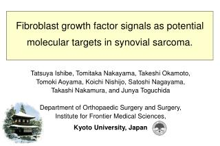 Fibroblast growth factor signals as potential molecular targets in synovial sarcoma.