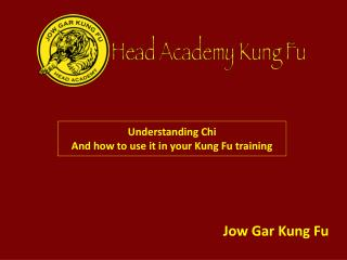 Understanding Chi And how to use it in your Kung Fu training