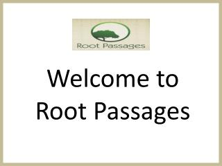 Find The Best Ibogaine Treatment Centre -Rootapassages