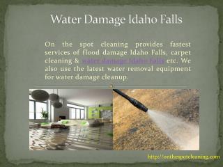 Water Damage Idaho Falls